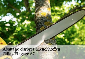 Abattage d'arbres  menchhoffen-67340 Artisan Wels