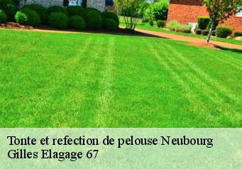 Tonte et refection de pelouse  neubourg-67350 Artisan Wels